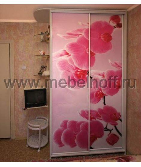Шкаф купе с фотопечатью Розовые цветы (модель 21)