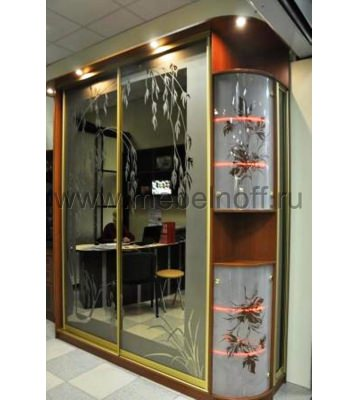 Шкаф купе с рисунком на закругленных дверях (модель 13)